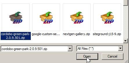 Click theme zip file then open