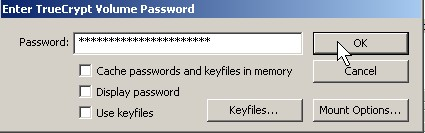 Type in the correct password for the encrypted drive and click OK Button.