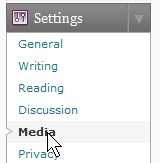 Go to Settings and click on Media
