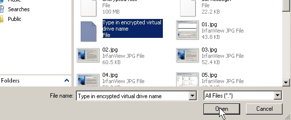 Find your truecrypt file and click open button.