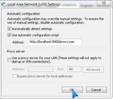 Local Area Network (LAN) settings