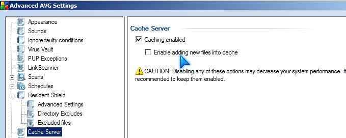 AVG Cache Server settings