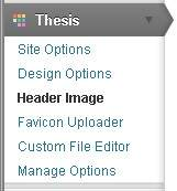 Thesis section WordPress Dashboard